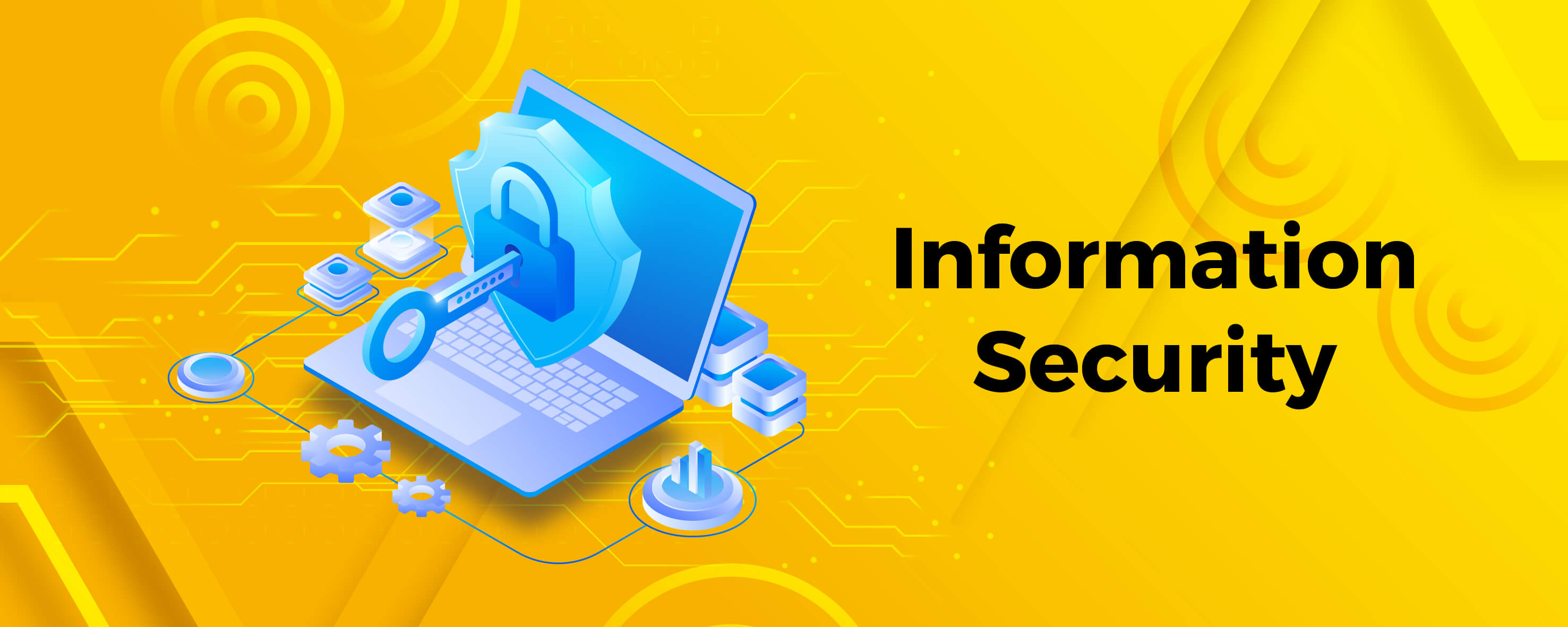 Unauthorized Access Denied - The best way to share your data private information securely with catTHIS